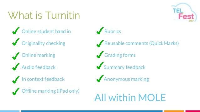 turnitin document viewer feedback studio