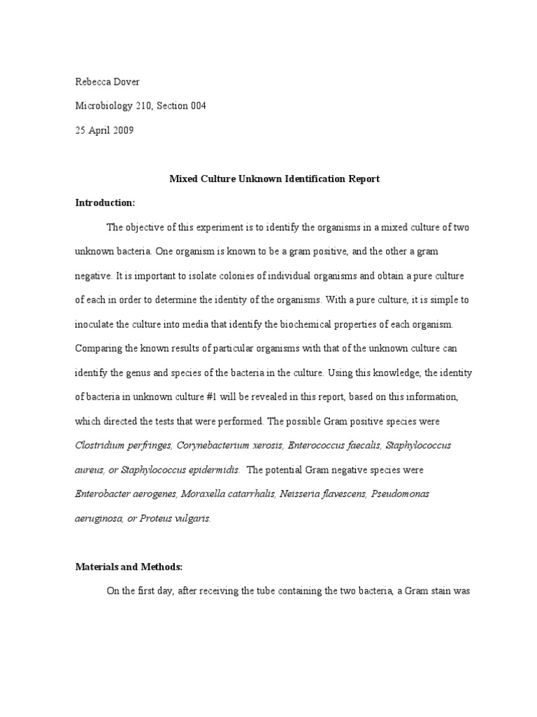 documentation and report writing in nursing